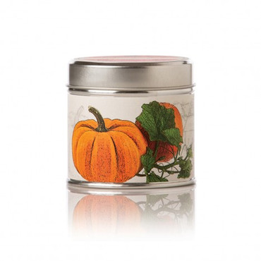 Rosy Rings Pumpkin Farmhouse Soy Tin Candle