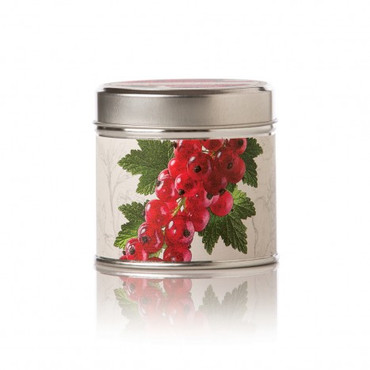 Rosy Rings Red Currant & Cranberry Soy Tin Candle