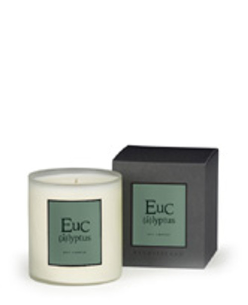 Archipelago AB Home Collection Large Eucalyptus Soy Candle