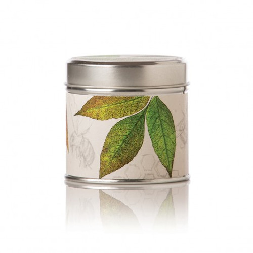 Rosy Rings Honey Tobacco Soy Tin Candle