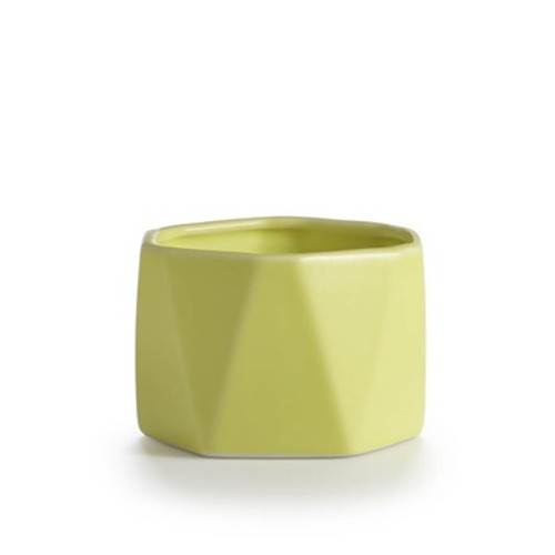 Illume Pineapple Cilantro Dylan Ceramic Candle