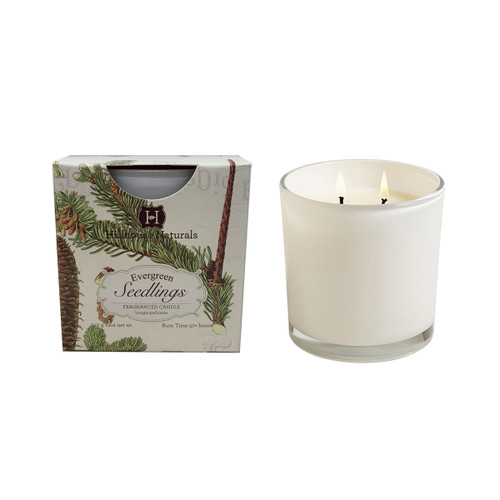 Hillhouse Naturals Evergreen Seedlings 2-Wick White Glass Boxed Candle