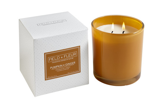 Hillhouse Naturals Field & Fleur Pumpkin & Ginger 2-Wick Glass Holiday