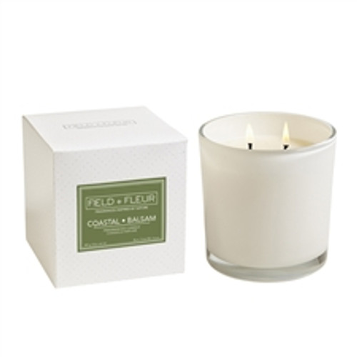 Hillhouse Naturals Field + Fleur Coastal Balsam 2 Wick Candle White Glass 12oz