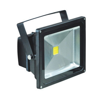 Black 30 W LED Flood Light