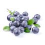 Wild Blueberry Fruit Spread, 350ml