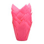 Tulip Baking Cup - Pink, 24 Pack