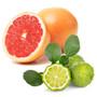 Hand Soap - Grapefruit + Bergamot, 350ml