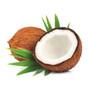 Virgin Coconut Oil- Organic, 444ml