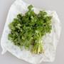 Beeswax Food Storage Wrap - Large, Set of 2