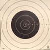 SR-21C Shooting Target