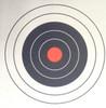 Hill-23/2 Shooting Target