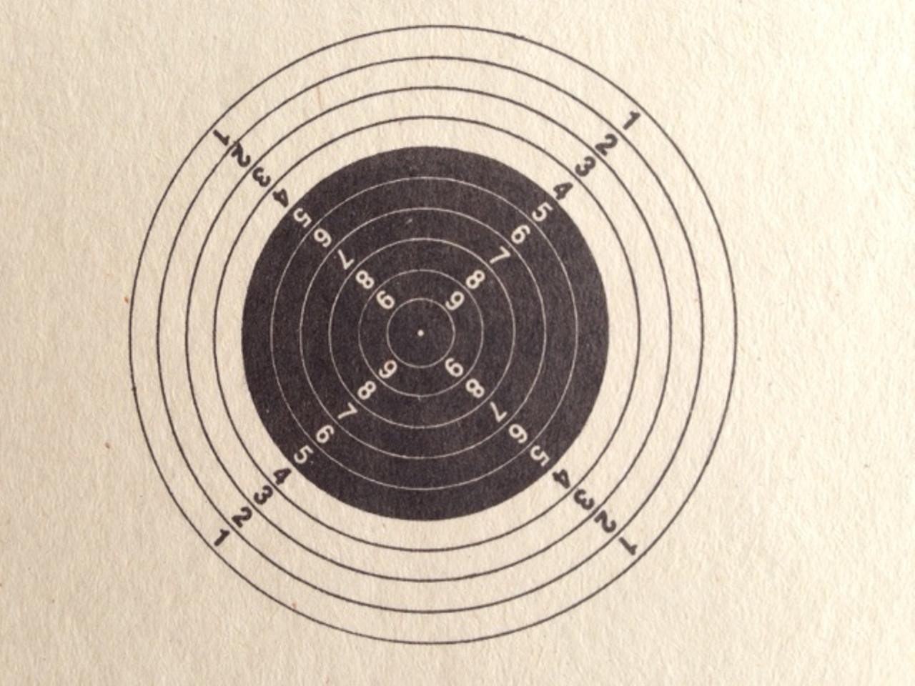 AR-6 Running Shooting Target