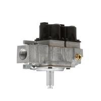 (T9-3) Lang 80505-10 Solenoid dual gas