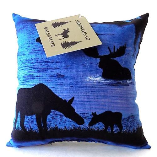 Twilight Moose Balsam Fir, 5 inch