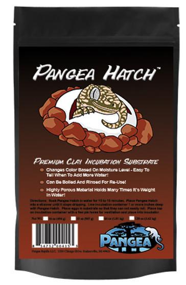 Pangea Hatch (egg incubation)