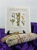 Sacred Herb Bundle Package