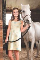 Roadtrip Patch Pocket Dress Playwear