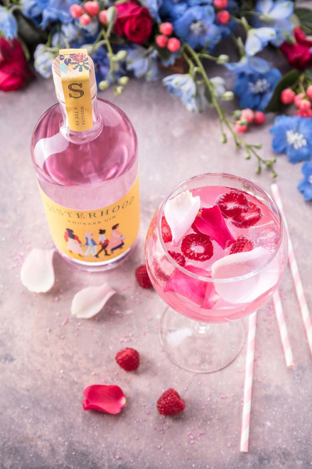 Featured: Sisterhood Gin served with raspberries and garnish