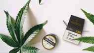 CBD Crystals: Everything You Need to Know