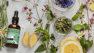 What Are Botanicals?