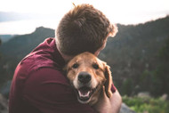 How Pets Absorb CBD Differently Than Humans