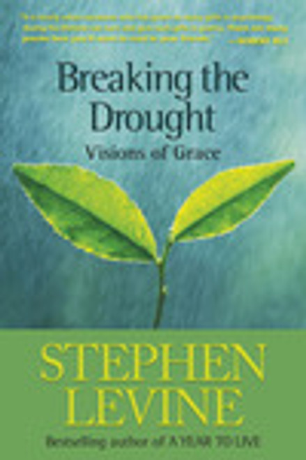 Breaking The Drought - Visions of Grace