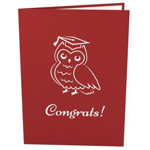Graduation Owl by Lovepop