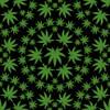 2064-99 Black || Herban Sprawl Too