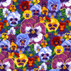 2141-70 Periwinkle    Pansy Prose