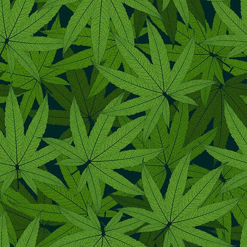 1023-66 Green    Herban Sprawl - Digital