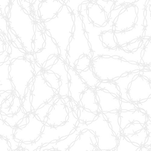 2000-01W  White on White