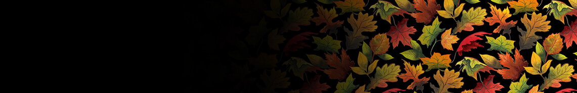 fall-delight-header.jpg