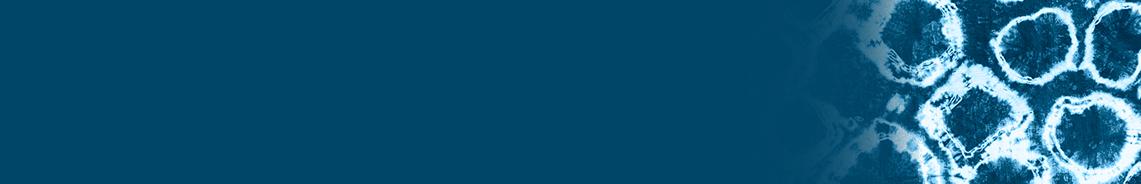 katori-header-copy.jpg