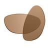 Brown Polarized