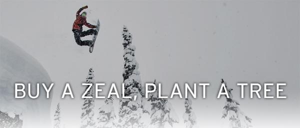 buyazealplantatree2.jpg
