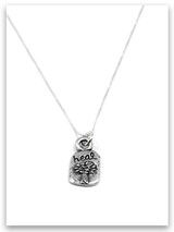 Heal iTAG Sterling Silver Necklace