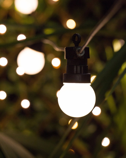10m Frosted STARTER Festoon Lights *