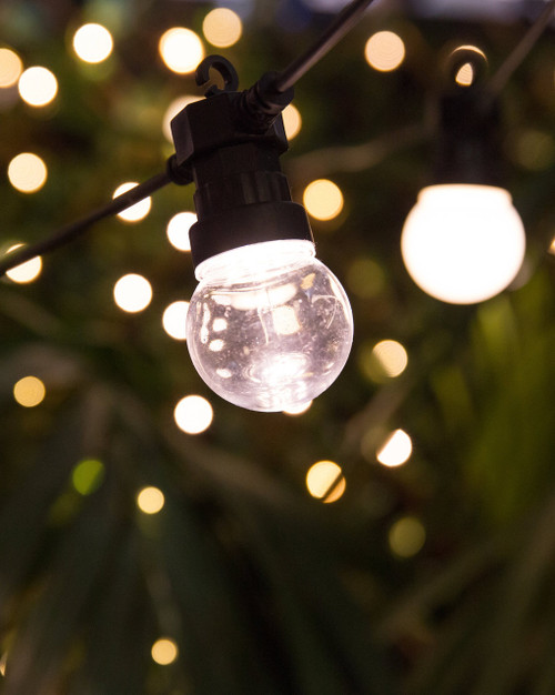 10m Clear STARTER Festoon Lights *