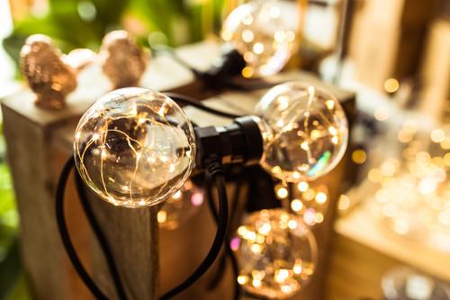 5m Twinkle Festoon Lights*