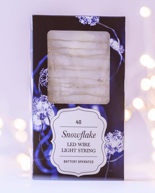 4m AA Snowflake Seed Lights *