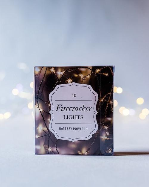 40 (1m) 'Firecracker' Seed Lights *