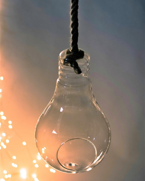 Hanging Glass Bulb Terrarium with rope *