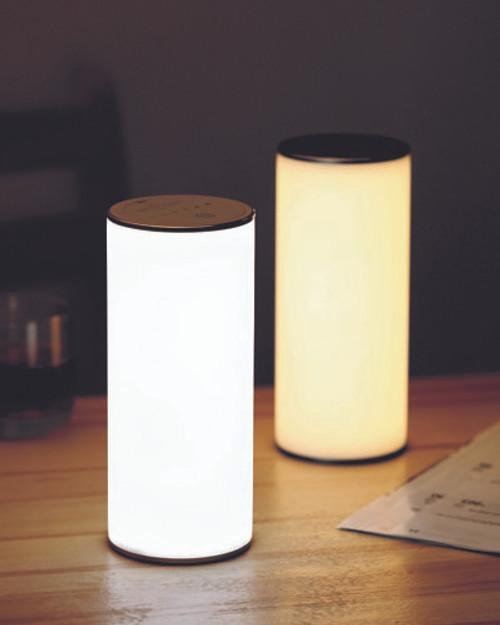 Gravity Lamp*