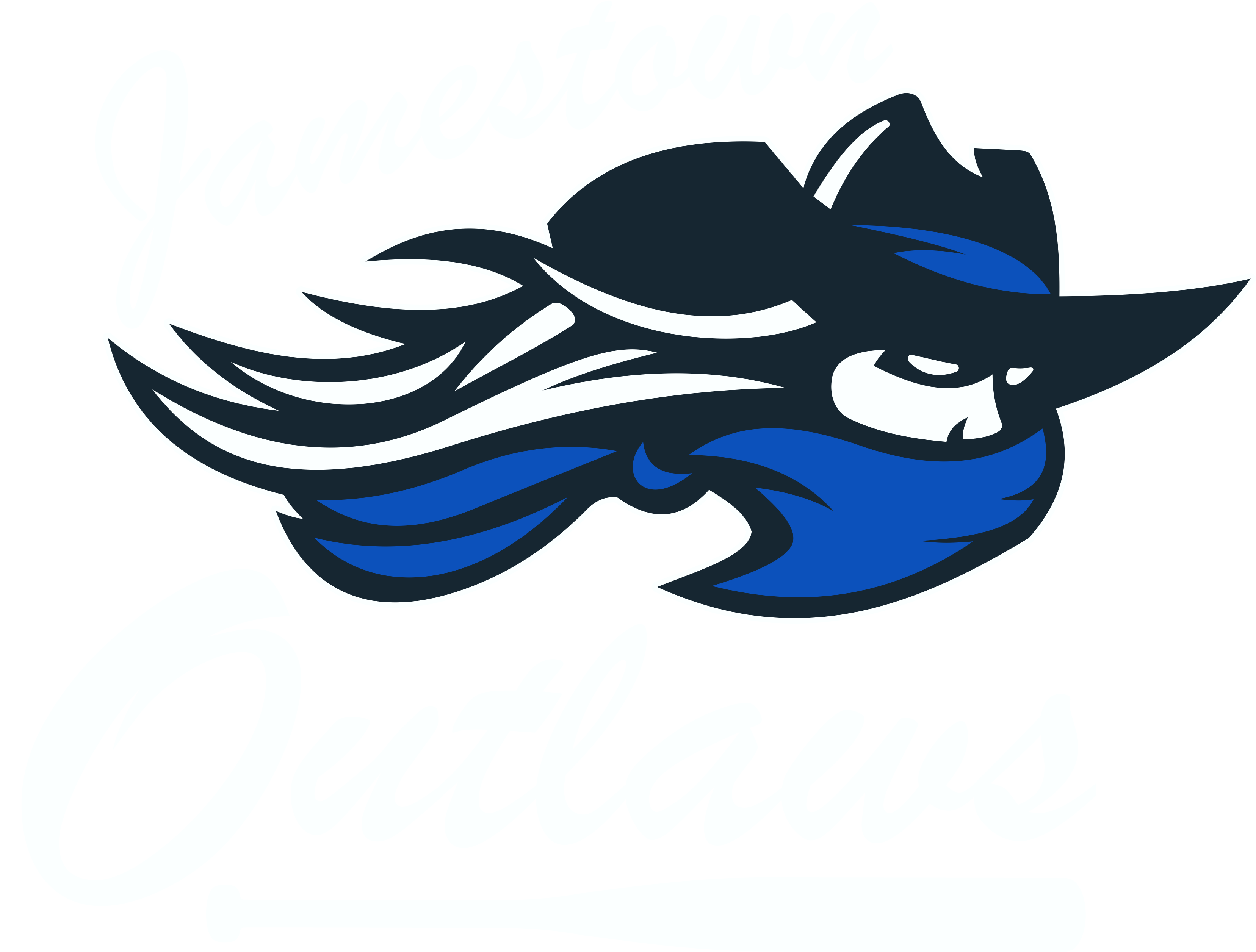 outlaw-softball-store-21-logo.png