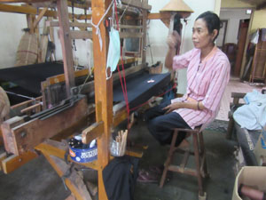 weaver-thumb-4891.jpg