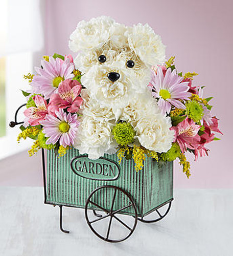 EXCLUSIVE Get tails wagging with our cheerful Pup N' Posies arrangement! Crafted of fresh white carnations, our truly original dog is surrounded by bunches of eye-catching blooms. He's set in our exclusive vintage-inspired flower cart, which can later be reused for planting or to hold gardening tools.