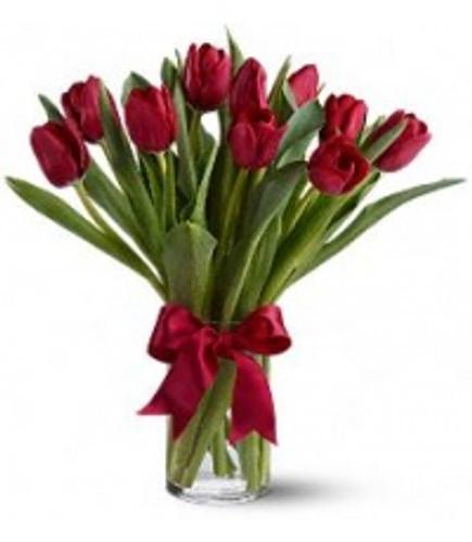 Red Tulip Vase