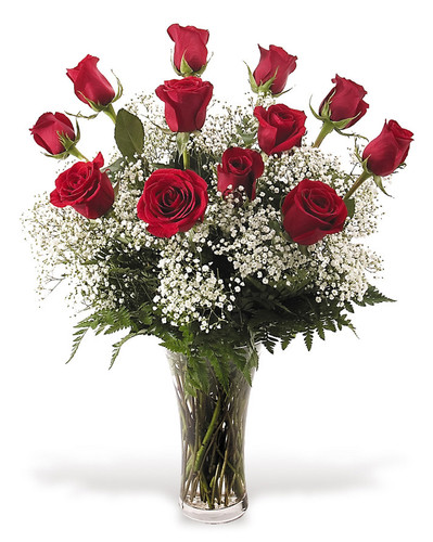 Dozen Long Stem Roses with Babies Breath in Square Vase
