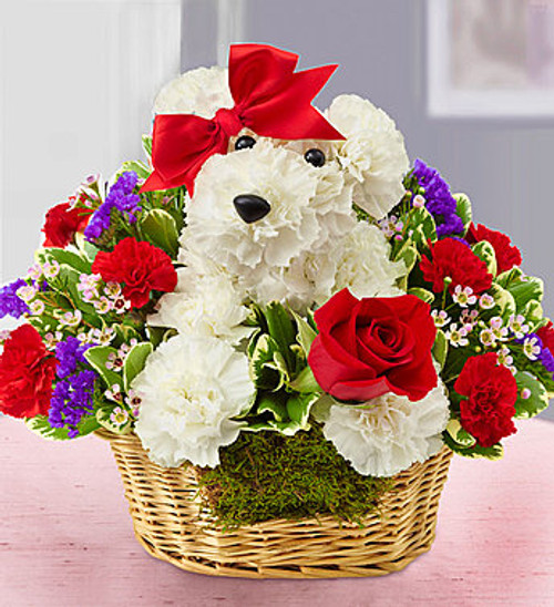 Love Pup EXCLUSIVE Give them a case of puppy love with our very own Love Pup. Crafted from bright white carnations, our canine cutie arrives in a charming dog bed basket, holding a single red rose. Whether you're looking to spark a romance or surprise friends, our adorable a-DOG-able is sure to get tails wagging!
